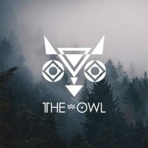 Logo : Realizacje